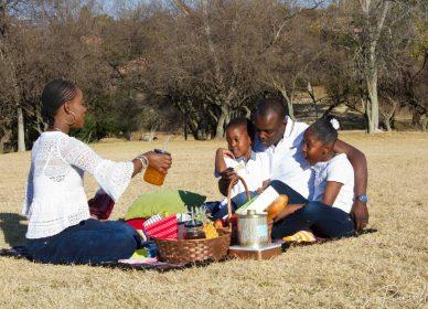 Family picnick